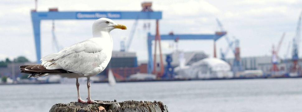 Top Themen in Kiel, © Stefan Friedrich, www.facebook.comStefansBilderwerkstatt