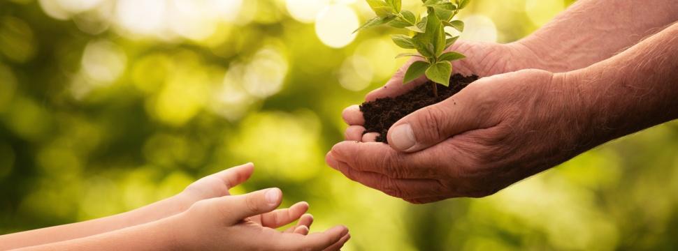 Umwelt & Recycling, © iStock.com/Nastco