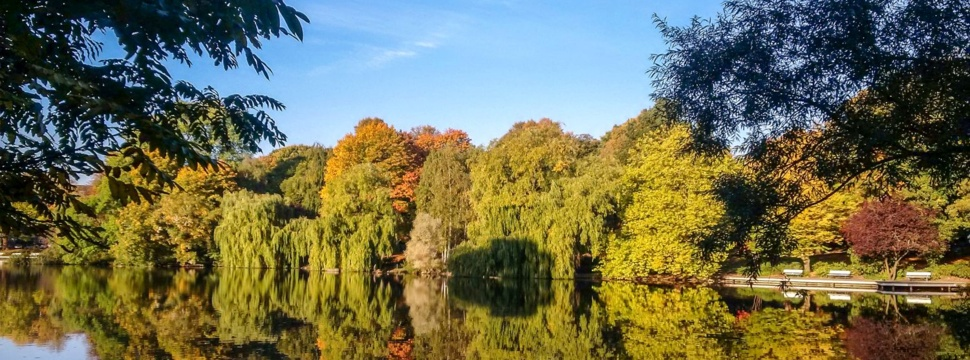 Der Schrevenpark im Herbst ©Lh Kiel - Petra Holtappel