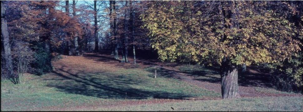 Diederichsenpark, © Georg Gasch, Stadtarchiv Kiel