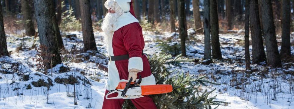 Weihnachtsmann, © STIHL